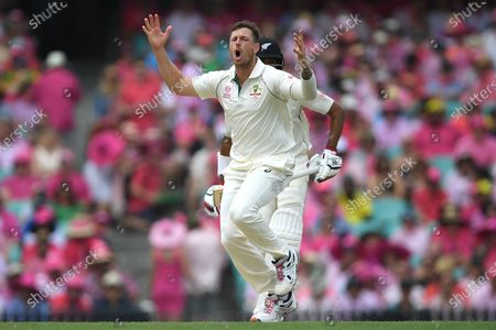 Stock Image of James Pattinson of Australia reacts during day three of the third Test Match between Australia and New Zealand at the Sydney Cricket Ground (SCG) in Sydney, Australia, 05 January 2020.