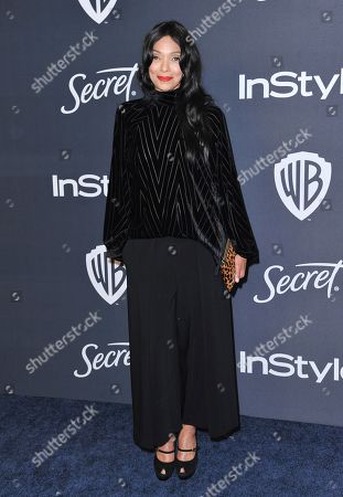 Stock Photo of Tamara Taylor arrives at the InStyle and Warner Bros. Golden Globes afterparty at the Beverly Hilton Hotel, in Beverly Hills, Calif