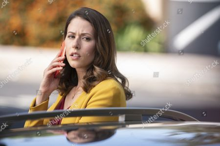 Amanda Crew as Monica Hall