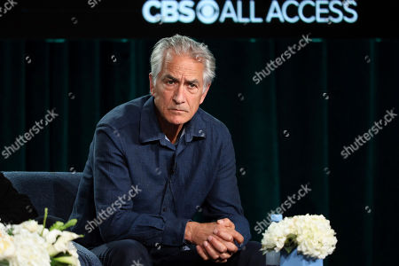"Stock Photo of David Strathairn speaks at the ""Interrogation"" panel during the CBS TCA Winter 2020 Press Tour at the Langham Huntington Hotel, in Pasadena, Calif"
