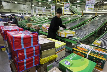 Postal workers process parcels for door-to-door delivery service ahead of the Lunar New Year's holiday, at a logistics center of the Korea Post in Gwangjin-go District, in Seoul, South Korea, 14 January 2020. The Lunar New Year, falling this year from 24 to 27 January, is one of Korea's major traditional holidays. During the festivities, many Koreans will take long trips to their hometowns to visit family and pay homage to their ancestors.