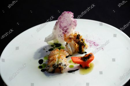 Stock Picture of Detail of a dish prepared by Spanish chef Elena Arzak, from the restaurant Arzak, during her masterclass on 'Natural enzymes' at the 18th Madrid Fusion gastronomy fair, in Madrid, Spain, 15 January 2020. The gastronomic event runs until 15 January.