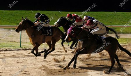 Stock Photo of RED STRIPES (right, Charles Bishop) beats FINAL LEGACY (left) in The Betway Heed Your Hunch Handicap Southwell