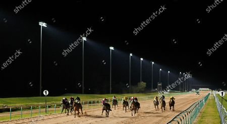 Editorial picture of Horse Racing - 15 Jan 2020