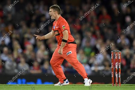 Stock Image of Cameron Boyce of the Renegades celebrates a wicket