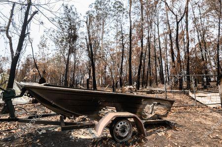 Editorial photo of Bushfire recovery efforts in Mogo, Australia - 15 Jan 2020