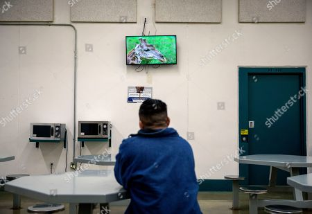 A detainee watches a nature program on television in his pod at the Stewart Detention Center, in Lumpkin, Ga. The Stewart Detention Center sits in Lumpkin, a rural town about 140 miles southwest of Atlanta and right next to the Georgia-Alabama state line. The city's 1,172 residents are outnumbered by the roughly 1,650 male detainees that U.S. Immigration and Customs Enforcement said were being held in the detention center in late November