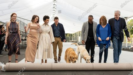 Stock Image of Elizabeth McLaughlin, Joey King, Logan Browning, Todd Milliner, Luther and Amber, Jason Winston George, Kathy Connell, Daryl Anderson with Luther and Amber on the Silver Carpet rollout