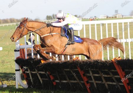 THURLES MONK FISH and Paul Townend jump the last to win The W.T. O'Grady Memorial Irish EBF Novice Hurdle. Healy Racing