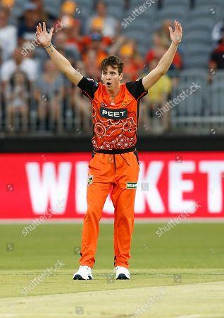 Editorial photo of Perth Scorchers v Sydney Thunder, Cricket, Big Bash League, Optus Stadium, Perth, Australia - 20 Jan 2020