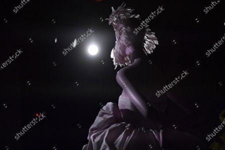Editorial image of Giambatista Valli - Exhibition - Paris Haute Couture Fashion Week S/S 2020, France - 20 Jan 2020