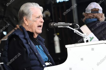 The Beach Boys - Brian Wilson