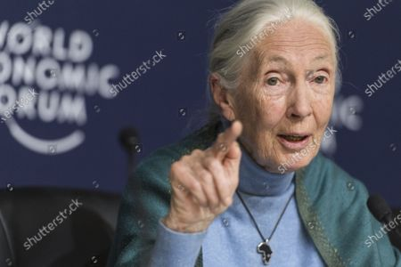 Jane Goodall, English primatologist and anthropologist, addresses a press conference during the 50th annual meeting of the World Economic Forum, WEF, in Davos, Switzerland, 22 January 2020. The meeting brings together entrepreneurs, scientists, corporate and political leaders in Davos from January 21 to 24.