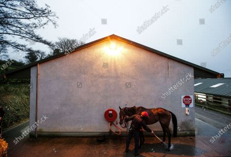 Jockey Tom Hamilton and Fakir D'oudairies pictured at the launch of the Dublin Racing Festival, which takes place at Leopardstown Racecourse on February 1st & 2nd