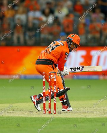 Stock Image of 24th January 2020; Optus Stadium, Perth, Western Australia, Australia; Big Bash League Cricket, Perth Scorchers versus Adelaide Stikers; Chris Jordan of the Perth Scorchers is bowled by Peter Siddle of the Adelaide Strikers
