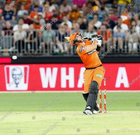 Editorial photo of Perth Scorchers v Adelaide Strikers, Cricket, Big Bash League, Optus Stadium, Perth, Australia - 24 Jan 2020
