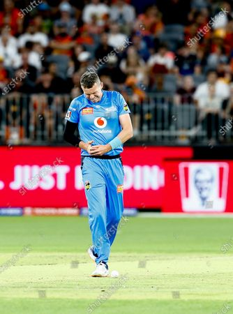 24th January 2020; Optus Stadium, Perth, Western Australia, Australia; Big Bash League Cricket, Perth Scorchers versus Adelaide Stikers; Peter Siddle of the Adelaide Strikers grimaces in pain after being struck on the hand by the ball