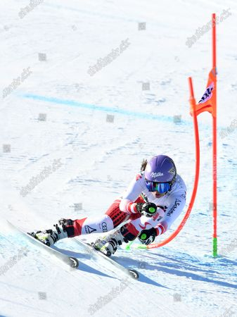 Anna Veith of Austria in action during  the women's Downhill race of the Alpine Skiing World Cup in Bansko, Bulgaria, 25 January 2020