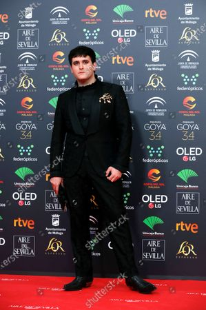 Alejandro Gomez Palomo attends the 34th annual Goya Awards ceremony at the Jose Maria Martin Carpena Sports Palace in Malaga, Spain, 25 January 2020. The awards are presented by the Spanish Academy of Motion Picture Arts and Sciences.