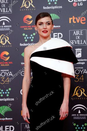 Spanish actress and Best Leading Actress nominee Marta Nieto attends the 34th annual Goya Awards ceremony at the Jose Maria Martin Carpena Sports Palace in Malaga, Spain, 25 January 2020. The awards are presented by the Spanish Academy of Motion Picture Arts and Sciences.