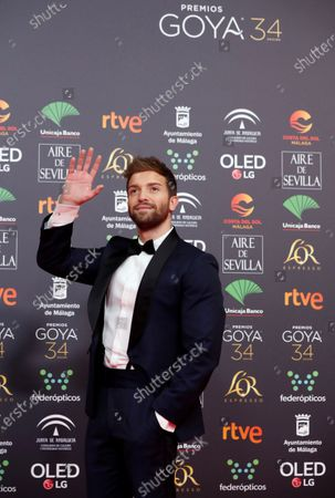 Pablo Alboran attends the 34th annual Goya Awards ceremony at the Jose Maria Martin Carpena Sports Palace in Malaga, Spain, 25 January 2020. The awards are presented by the Spanish Academy of Motion Picture Arts and Sciences.
