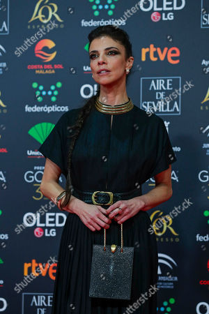 Spanish actress Maribel Verdu poses for photographers at the red carpet ahead the Goya Film Awards Ceremony in Malaga, southern Spain,. The annual Goya Awards are Spain's main national film awards
