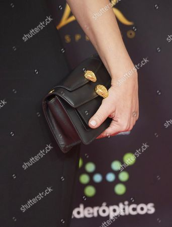 Stock Image of Ana Alvarez, bag detail