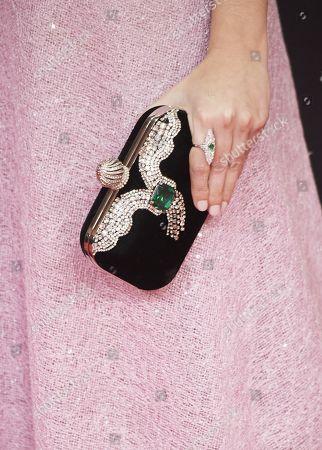 Stock Image of Candela Serrat, bag detail
