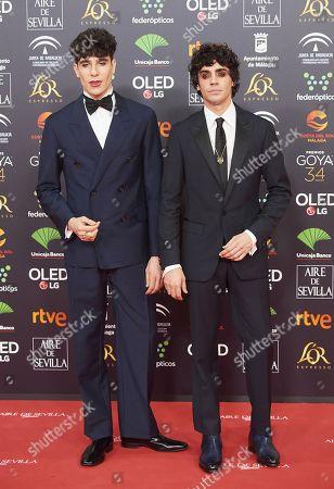 Editorial picture of 34th Goya Awards, Jose Maria Martin Carpena Sports Palace, Malaga, Spain - 25 Jan 2020