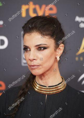 Stock Photo of Maribel Verdu