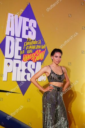 Editorial image of Red Carpet, Mexico City, Mexico - 25 Jan 2020