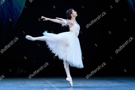 Stock Picture of Yasmine Naghdi rehearses for 'Giselle'