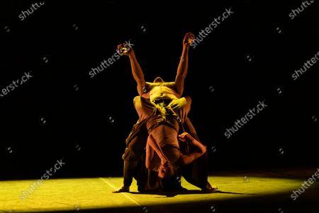 Editorial photo of Ballet Icons Gala 2020 rehersals, London Coliseum, London, UK - 26 Jan 2020