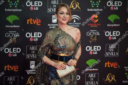 Editorial picture of 34th Goya Awards, Malaga, Spain - 25 Jan 2020