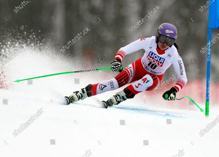 Editorial photo of FIS Alpine Skiing World Cup in Rosa Khutor, Krasnaya Polyana, Russian Federation - 02 Feb 2020