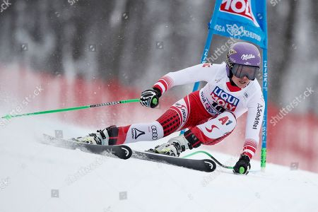 Stock Photo of Austria's Anna Veith competes in an alpine ski, women's World Cup super G, in Rosa Khutor, Russia