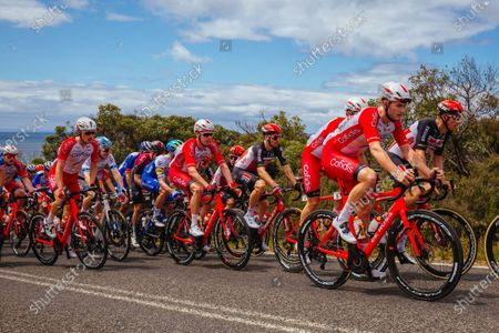 Cofidis team during the 2020 Cadel Evans Great Ocean Road Race