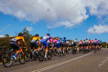 The peloton rounds Bells Beach during the 2020 Cadel Evans Great Ocean Road Race