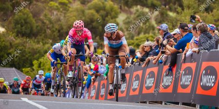 The peloton rides up Challambra Crescent during the 2020 Cadel Evans Great Ocean Road Race