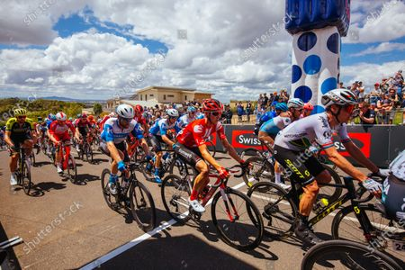 Riders reach the top of Challambra Crescent during the 2020 Cadel Evans Great Ocean Road Race