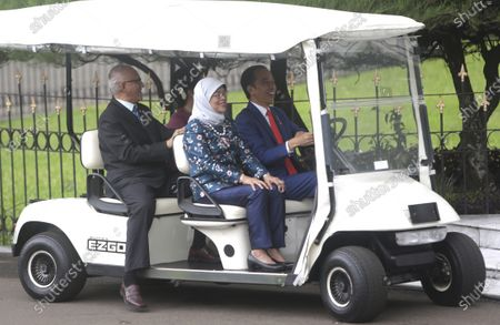 Stock Image of Singaporean President Halimah Jacob (2-R), her husband Mohamed Abdullah Alhabshee(L), Indonesian President Joko Widodo (R) and wife Iriana Joko Widodo (2-L) ride a golf cart at the Bogor Palace in Bogor, Indonesia, 04 February 2020.