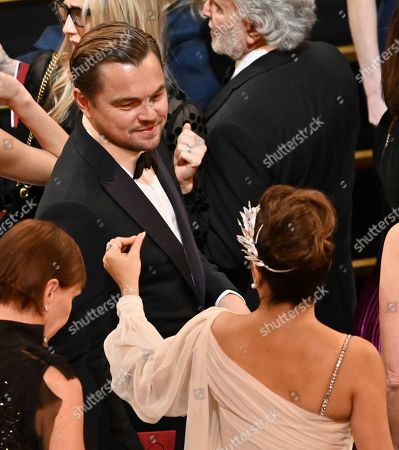 Leonardo DiCaprio and Salma Hayek