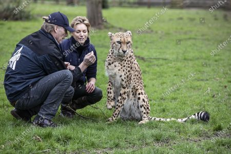 Stock Image of Damian Aspinall and Victoria Aspinall with the Cheetah Saba within the enclosure.