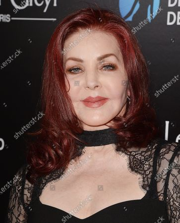Stock Image of Priscilla Presley