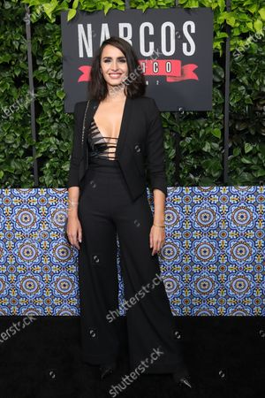 Fernanda Urrejola arrives on the red carpet prior to a special screening of Netflix's 'Narcos: Mexico Season 2' at the Netflix Home Theater in Los Angeles, California, USA, 06 February 2020.