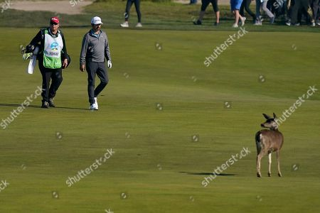 Ray Romano walks with his caddy on the 12 fairway of the Monterey Peninsula County Club Shore Course during the second round of the AT&T Pebble Beach National Pro-Am golf tournament, in Pebble Beach, Calif