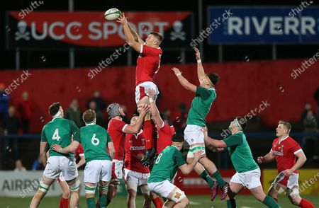 Ben Carter of Wales wins the line out.