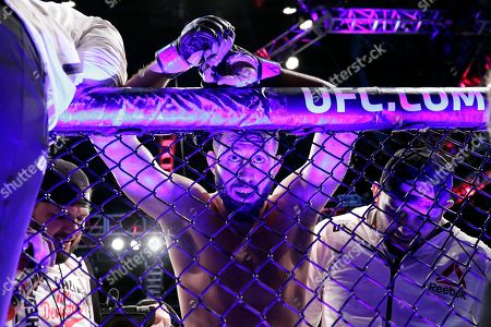 Dominick Reyes rests on the fence after his light heavyweight mixed martial arts bout against Jon Jones at UFC 247, in Houston