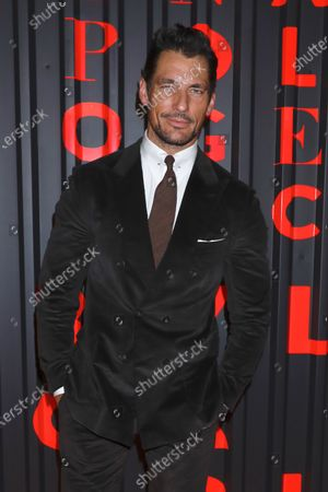 Stock Picture of David Gandy