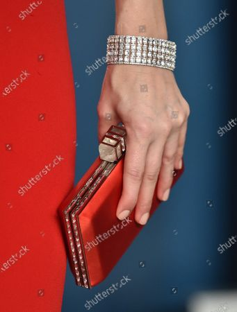Stock Picture of Whitney Cummings, bag detail